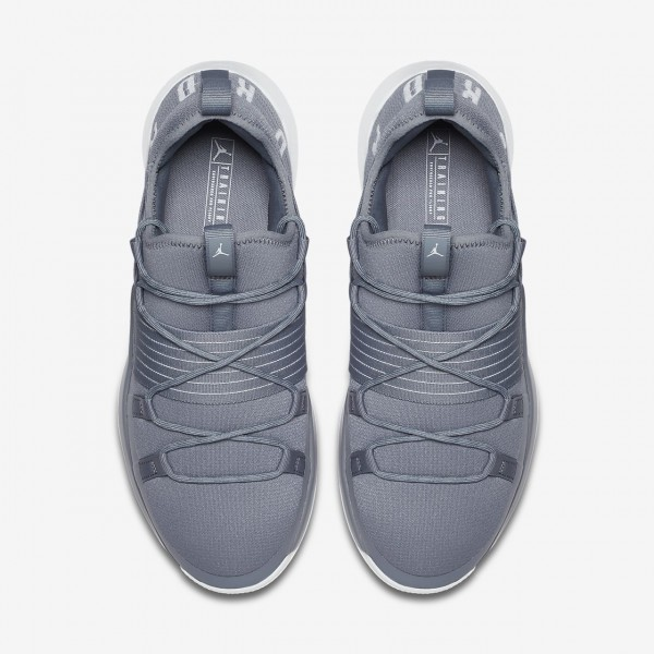 Nike Jordan Trainer Pro Trainingsschuhe Herren Grau Platin 128-71394