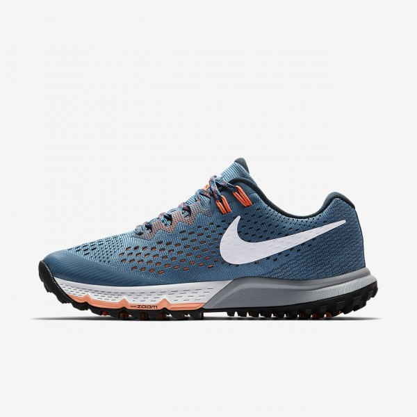 Nike Air Zoom Terra Kiger 4 Laufschuhe Damen Silbe...